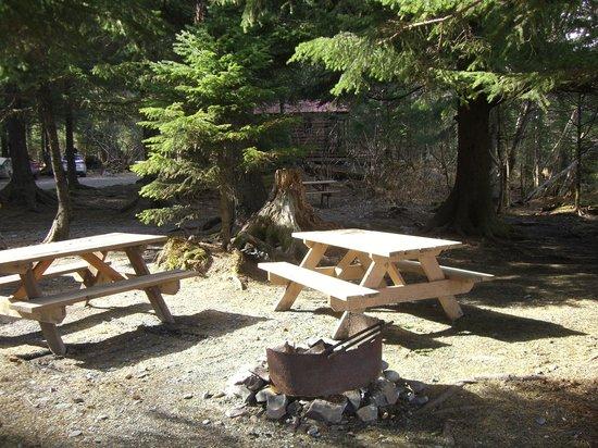 Miller's Landing: Campsite ~ Ted
