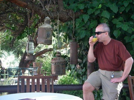 Dennehof Karoo Guesthouse: Enjoying a nice fresh juice in the breakfast area