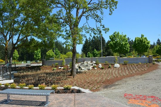 Lacey, WA: Meconi's View - Water feature
