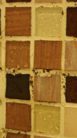 Royal President: Black spots between tiles