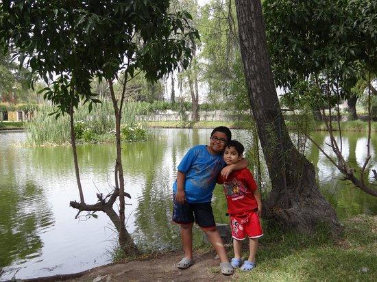 El Lago Estelar Hotel: El Lago