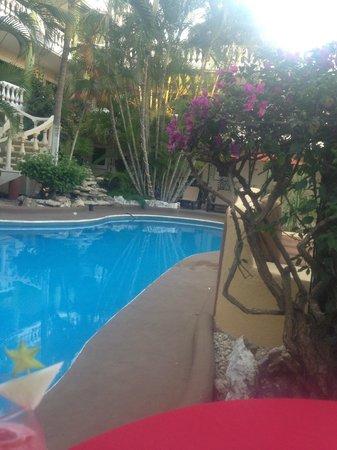 Mayan Bistro: pool