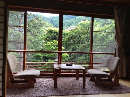 Kinosaki Onsen Nishimuraya Honkan: View from our room