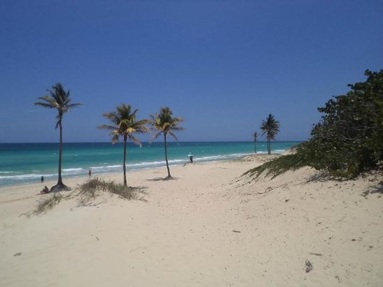 Playas de Este : Playas del este