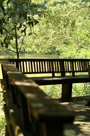 The Cliff & River Jungle Resort: Riverside Restaurant