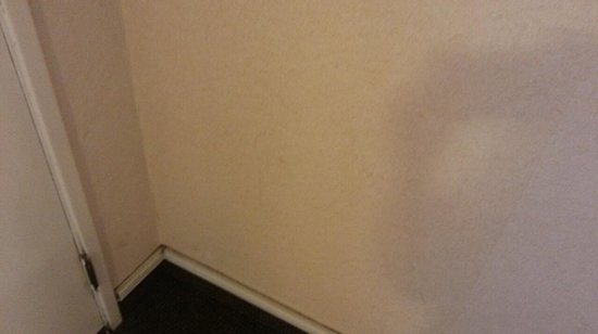 Quality Inn Near Long Beach Airport: Another icky wall in my room