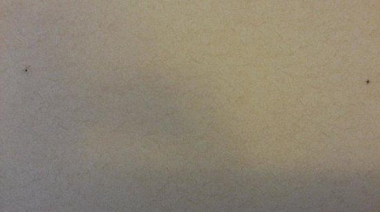 Quality Inn Long Beach Airport: wall paper