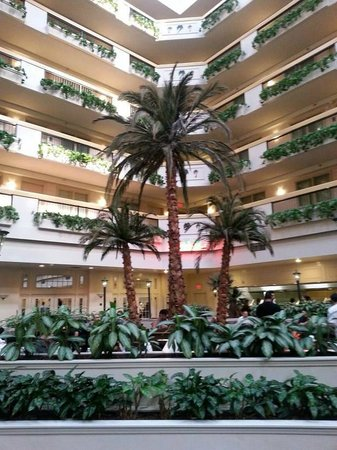 Embassy Suites by Hilton Las Vegas: Beautiful Courtyard trees