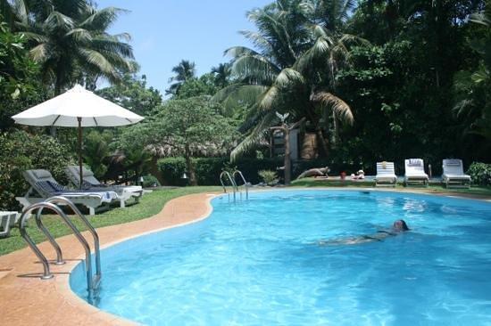 Dalmanuta Gardens - Ayurvedic Resort & Restaurant: Chilling by the pool