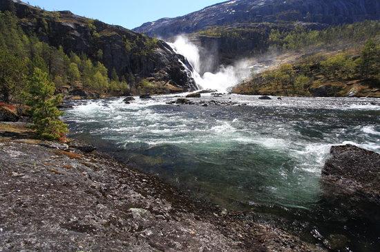 Kinsarvik, Norwegia: Nykkjesøyfossen