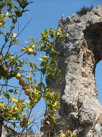 Zona Archeologica: Natur im Park