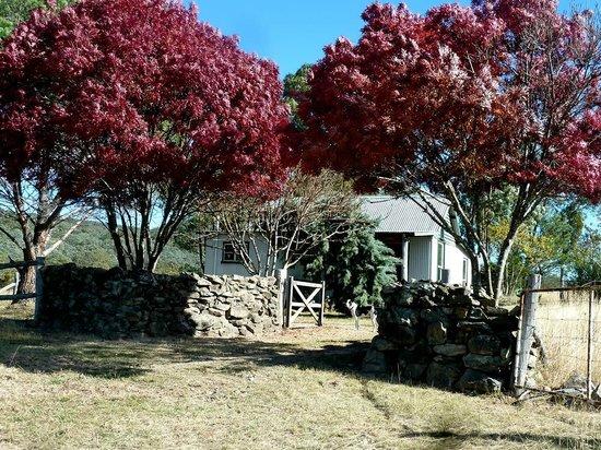The Folly Ballandean: Ironbark Hut - great for families!