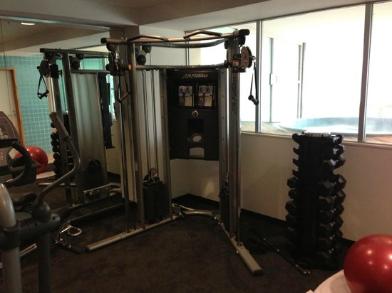 Novotel Hamilton Tainui: Life fitness weight station
