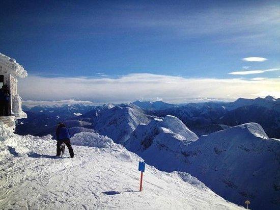 Fernie Alpine Resort : Stunning view from Polar Peak
