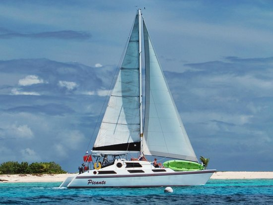 ‪Sailing Catamaran Picante Private Day Tours‬