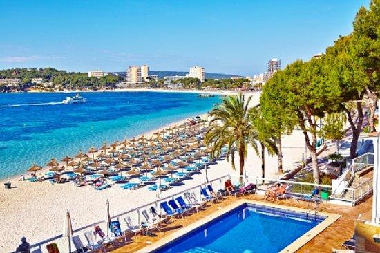 Flamboyan Caribe: Terrace pool and beach from Hotel