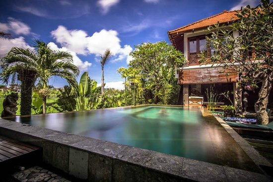 Umah Watu Villas: View of Pool/Padi field
