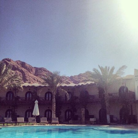 Dahab Paradise: The backdrop