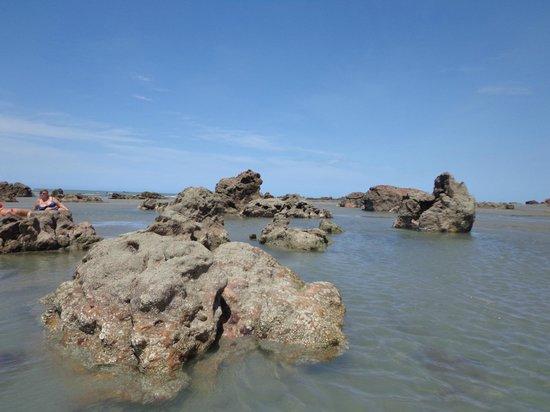 Praia Ponta Grossa : Ponta Grossa