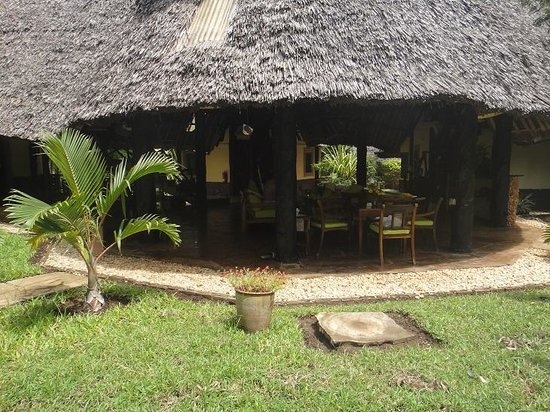 "Forest Dream Resort: Our ""Duiker"""