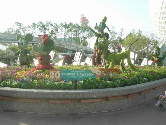 EPCOT : Flower & Garden