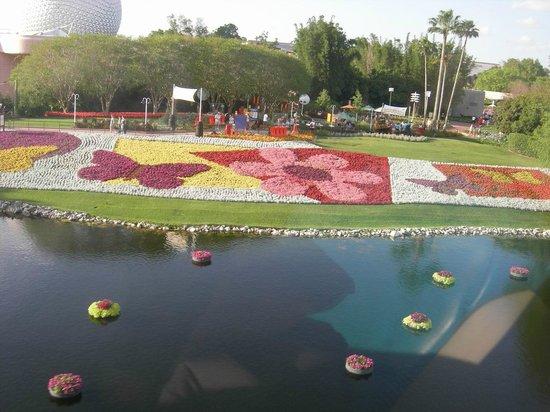 EPCOT : Jardin vu du monorail