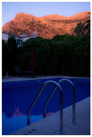 Hotel Salvia - Adults Only: The garden and pool in the evening sun