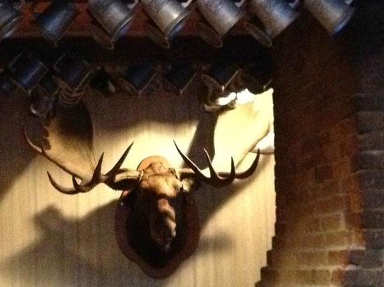 Wolfe's Tavern : Kiss the moose!