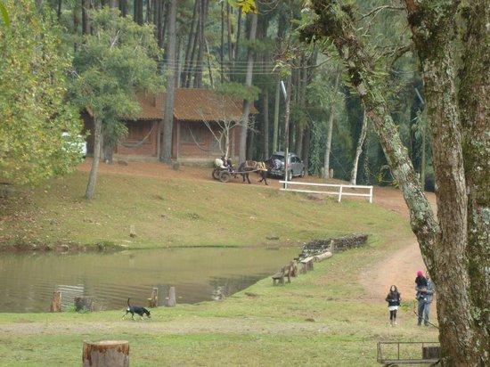 Hotel Fazenda Pinus Parque: Passeio de charrete é 10 !!!!