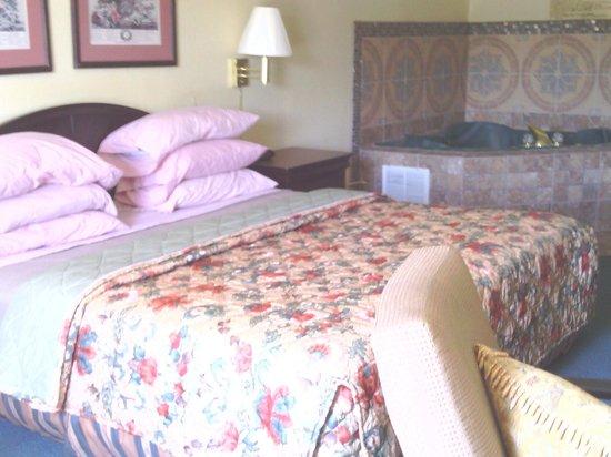 Super 8 Piedmont Greenville Area: bedroom