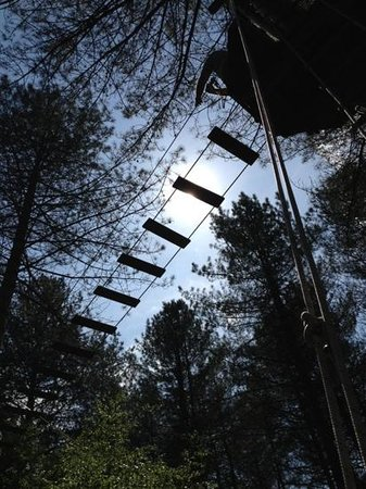 Go Ape Moors Valley: The railway bridge..