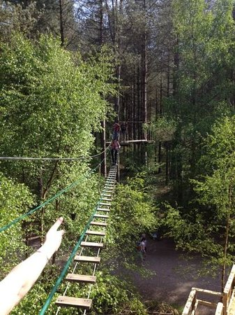 Go Ape Moors Valley: The long wak..
