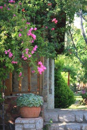 Kizilbuk Wooden Houses: :)