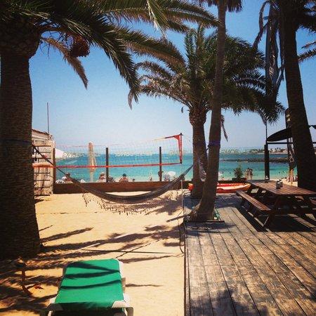 Billabong Surf Camp & School: Billabong,  the best Surf Camp & School in Fuerteventura!