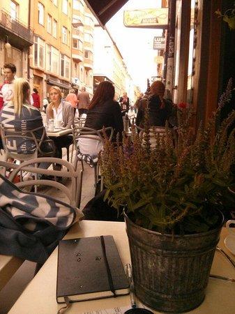 Muggens kok: The terrace