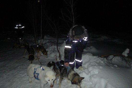 White Trail Adventures: The team