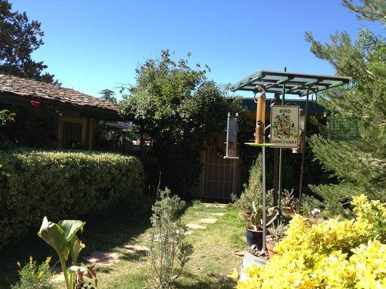 Rose Tree Inn: courtyard