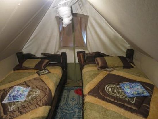 Moof Africa Organic Hostel / Camp: tents