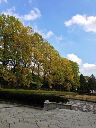 Tochigiken Chuo Park