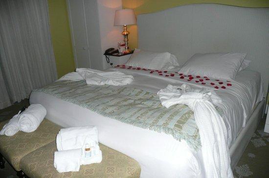Omni Bedford Springs Resort: Turn down service!