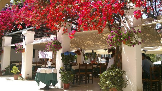 Bougainvillea Restaurant: outdoors with beautifull flowers