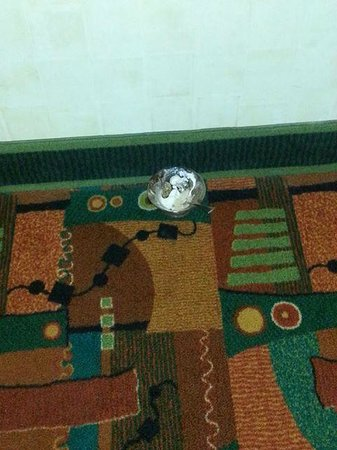 DoubleTree by Hilton Hotel Denver - Stapleton North: Mess left in hallway for 2 days