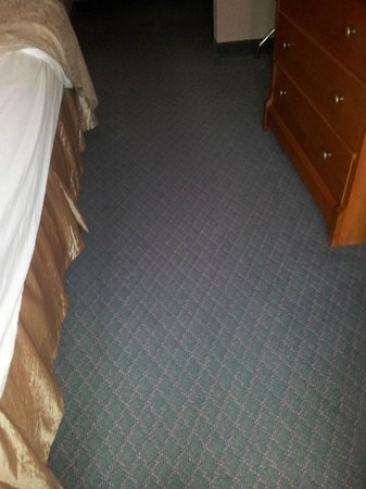 BEST WESTERN Bryson Inn: Rug stains all the way to bathroom