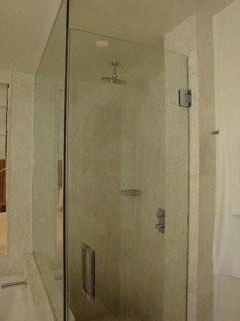 Kimpton EPIC Hotel: Great shower