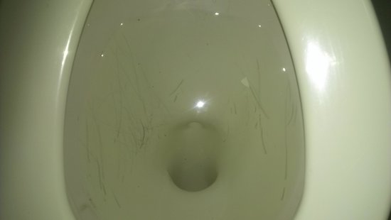 Days Inn Fort Lauderdale-Oakland Park Airport North: Disgusting scraped toilet
