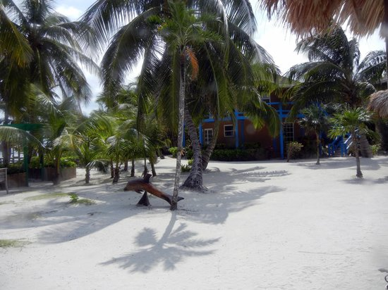 White Sands Cove Resort: beach