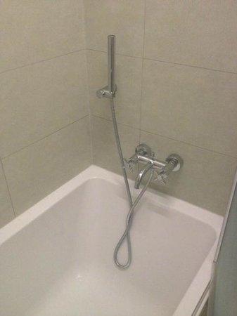EA Hotel Tereziansky Dvur : The dreaded hand held shower!