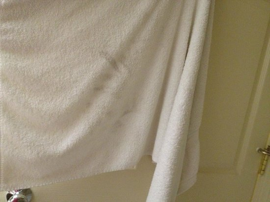 Ramada San Bruno SFO Airport: Towels were worn and at least one in my room had a noticeable stain