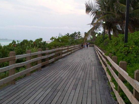 The Palms Hotel & Spa: paseo de la playa