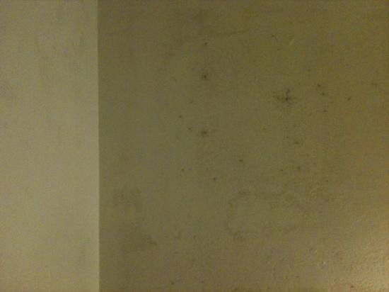 Richmond Studios: mur chambre
